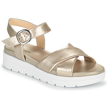 Sapatos Mulher Sandálias NeroGiardini LONELESS Ouro