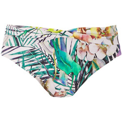 Textil Mulher Biquínis separados Fantasie FS6926 MUI Multicolor