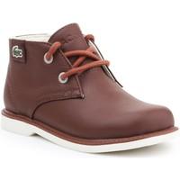 Sapatos Criança Botas baixas Lacoste Sherbrook HI SB SPC 7-30SPC201177T brown