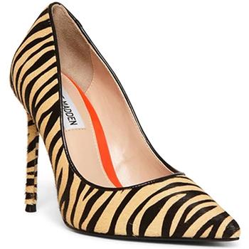 Sapatos Mulher Escarpim Steve Madden SMSVALAL-TIG Preto