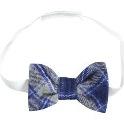 Textil Rapaz Gravatas e acessórios Ido 4K112 Multicolor