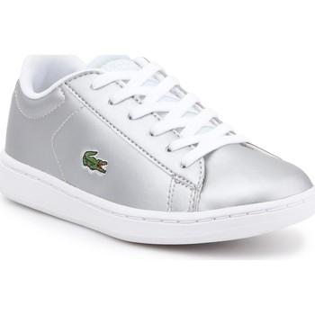 Sapatos Criança Sapatilhas Lacoste kids 7-34SPC0006334 silver