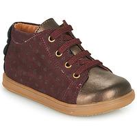 Sapatos Rapariga Sapatilhas Little Mary CLELIE Bordô