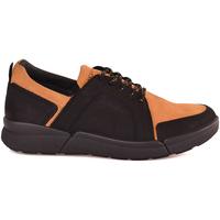 Sapatos Homem Sapatilhas IgI&CO 2126333 Preto