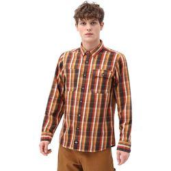 Textil Homem Camisas mangas comprida Dickies DK0A4X5LBD01 Castanho