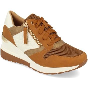 Sapatos Mulher Sapatilhas Ainy 9590 Camel