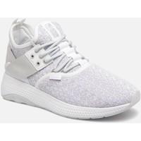 Sapatos Mulher Sapatilhas Palladium Manufacture AXEON LAC KNTW Cinza