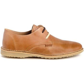 Sapatos Homem Sapatos & Richelieu Colour Feet ATACAMA Castanho