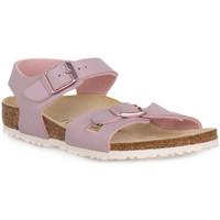 Sapatos Criança Sandálias Birkenstock RIO LAVENDER BLUSH CALZ S Grigio
