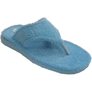 Sapatos Mulher Chinelos Andinas Listras planta andina turquesa Thongs de beige