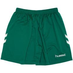 Textil Homem Shorts / Bermudas Hummel  Verde