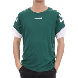 Textil Homem T-Shirt mangas curtas Hummel  Verde