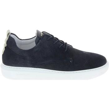 Sapatos Homem Sapatilhas Schmoove Bump Suede Print Bleu Azul