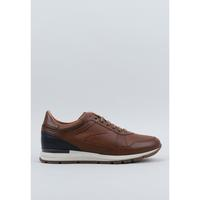 Sapatos Homem Sapatos Kangaroos 11-33 Castanho