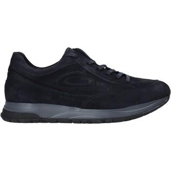 Sapatos Homem Sapatilhas Alberto Guardiani AGM004800 Azul
