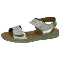 Sapatos Mulher Sandálias Laura Cañizares  Ouro