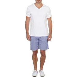 Textil Homem Shorts / Bermudas Franklin & Marshall GAWLER Azul / Bege