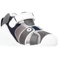 Sapatos Rapariga Sandálias Biomecanics 212144 Cinza