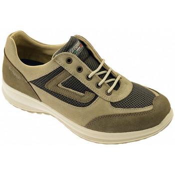Sapatos Homem Sapatilhas de cano-alto Grisport  Multicolor