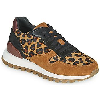 Sapatos Mulher Sapatilhas JB Martin HABILLE Castanho