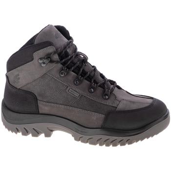 Sapatos Homem Sapatos de caminhada 4F Men's Trek Grise