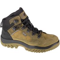 Sapatos Homem Sapatos de caminhada 4F Men's Trek Vert
