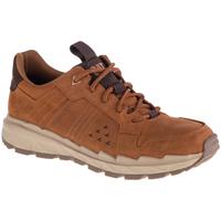 Sapatos Homem Sapatilhas Caterpillar Startify LO WP Marron
