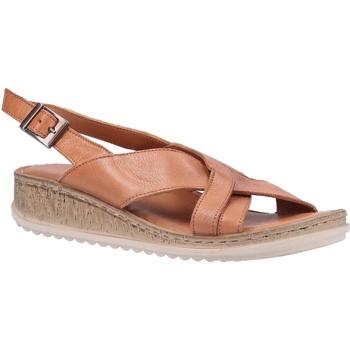 Sapatos Mulher Sandálias Hush puppies  Tan