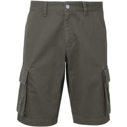 Textil Homem Shorts / Bermudas Asquith & Fox AQ054 Slate