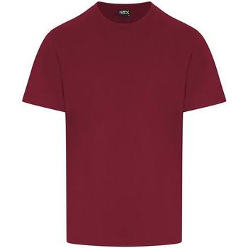 Textil Homem T-Shirt mangas curtas Pro Rtx RX151 Borgonha