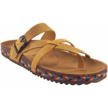 Sapatos Mulher Chinelos Interbios Sandália feminina  7121-c mostarda Amarelo