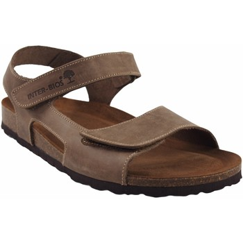 Sapatos Homem Sandálias Interbios Sandália masculina Castanho