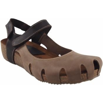 Sapatos Mulher Multi-desportos Interbios Sapato  5326 taupe Castanho