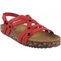 Sapatos Mulher Chinelos Interbios Sandália de senhora  7200-c vermelha Vermelho