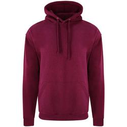 Textil Homem Sweats Pro Rtx RX350 Borgonha