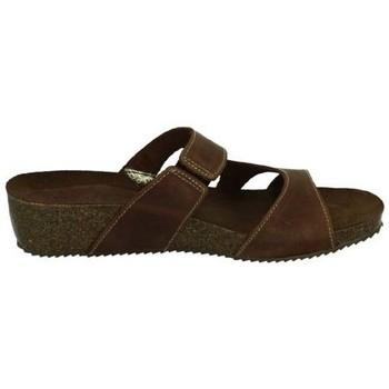 Sapatos Mulher Sandálias Interbios