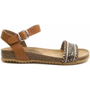Sapatos Mulher Sandálias Purapiel 70182 BROWN