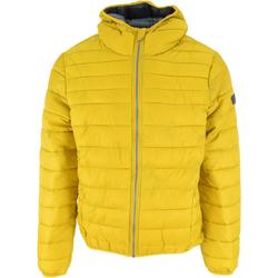 Textil Homem Quispos Lotto Bomber Cortina Hd Lg Pad Pl Amarelo