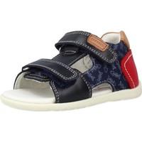 Sapatos Rapaz Sandálias Garvalin 212603 Azul