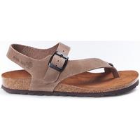 Sapatos Mulher Sandálias Interbios Sandalias  7162 Pardo Castanho