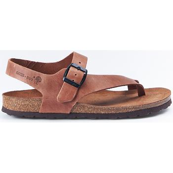 Sapatos Mulher Sandálias Interbios Sandalias  7162 Ours Castanho