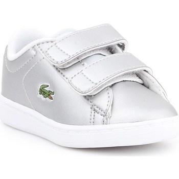 Sapatos Criança Sapatilhas Lacoste Carnaby Evo Prateado