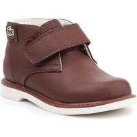 Sapatos Criança Botas baixas Lacoste 730SPI301177T Castanho