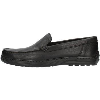 Sapatos Homem Mocassins Notton 807 Preto