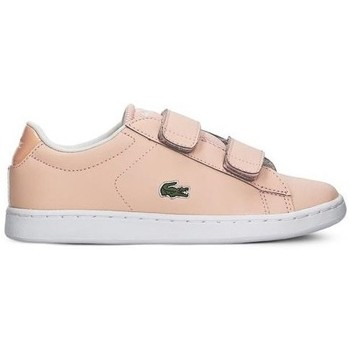 Sapatos Rapariga Sapatilhas Lacoste Carnaby Evo Strap Cor-de-rosa