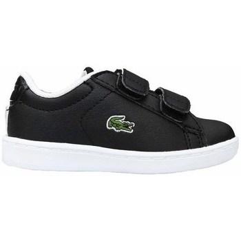 Sapatos Criança Sapatilhas Lacoste Carnaby Evo Strap Preto