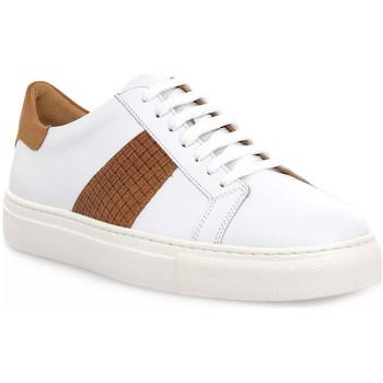 Sapatos Homem Sapatilhas Soldini COLORADO BIANCO CUOIO Bianco