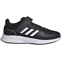 Sapatos Criança Sapatilhas de corrida adidas Originals Runfalcon 20 Preto