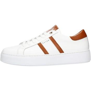 Sapatos Homem Sapatilhas Exton 861 Castanho