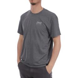 Textil Homem T-Shirt mangas curtas Hungaria  Cinza